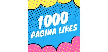 Winnaars trekking 1000 pagina  likes op Facebook